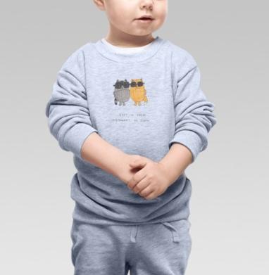 Енот и лиса - Купить детские свитшоты с надписями в Москве, цена детских свитшотов с надписями  с прикольными принтами - магазин дизайнерской одежды MaryJane