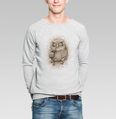 Сова - Купить мужские свитшоты с дымом в Москве, цена мужских свитшотов с дымом  с прикольными принтами - магазин дизайнерской одежды MaryJane