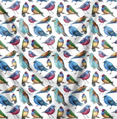 Экзотические птички - птицы, Популярные