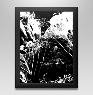 Растительное, Постер в чёрной раме