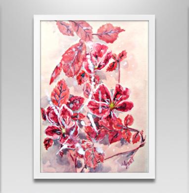 Розовый шиповник - Постеры, лето, Популярные