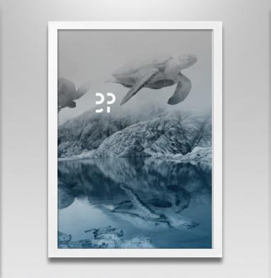Летающие черепахи - Постеры, горы, Популярные
