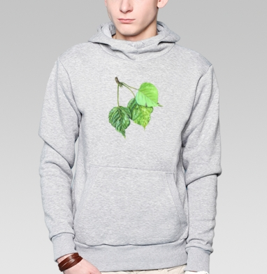 Листья тополя, Толстовка мужская, накладной карман серый меланж