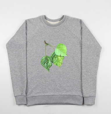 Листья тополя - Купить детские свитшоты с природой в Москве, цена детских свитшотов с природой  с прикольными принтами - магазин дизайнерской одежды MaryJane
