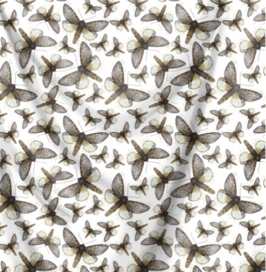 Нежные мотыльки - лето, Популярные